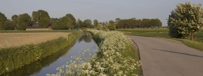 Voorjaar op het Hoogeland